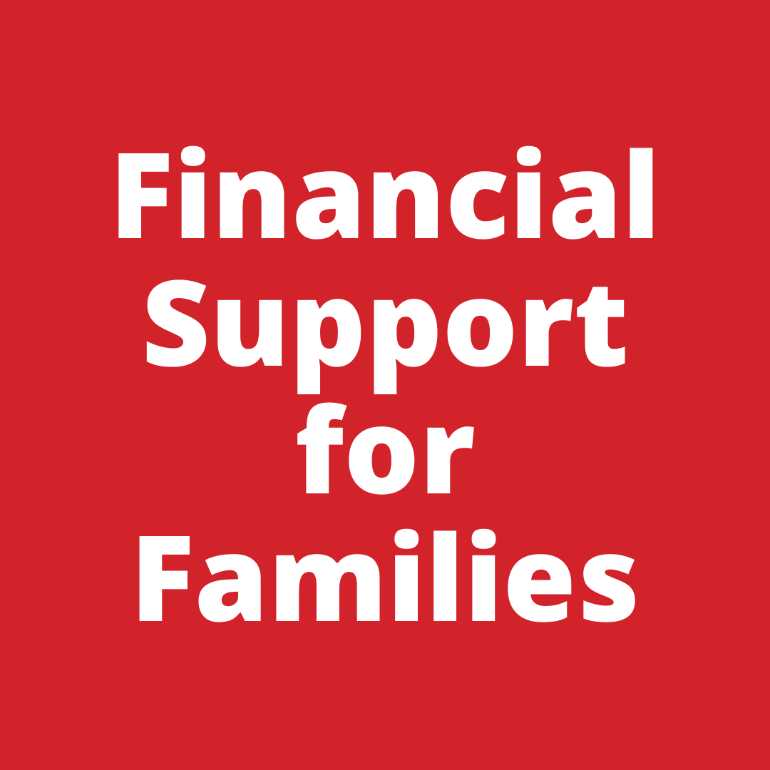 Financial Support for Families.png