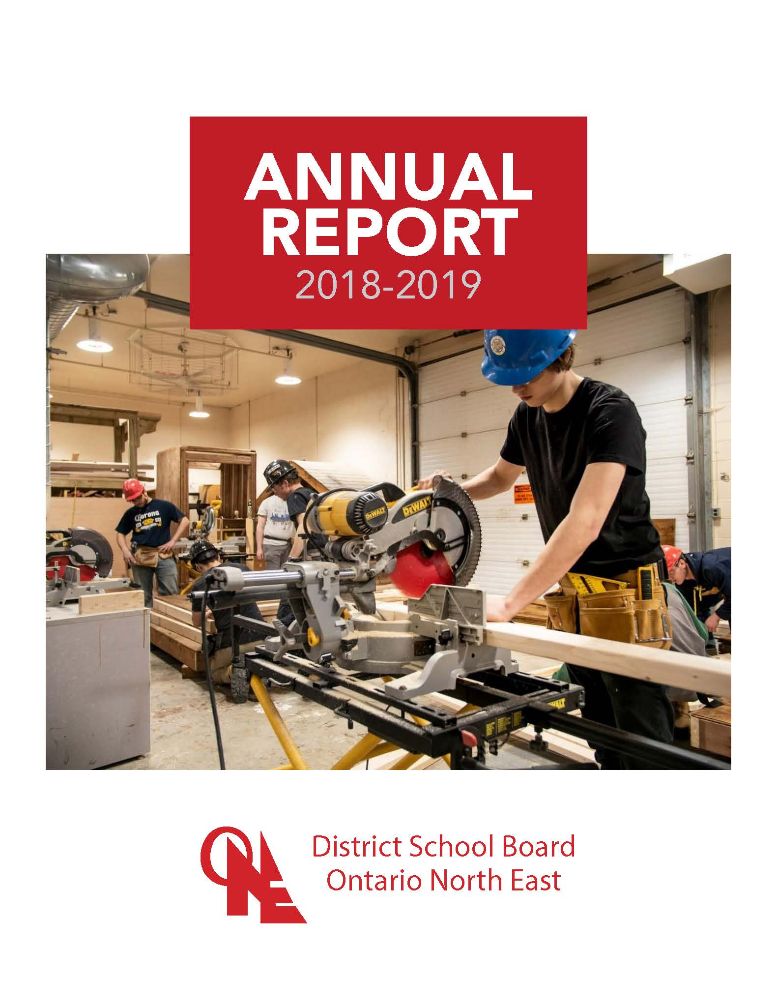 Read the 2018-2019 Director's Annual Report